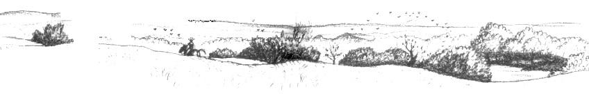 Prairie B